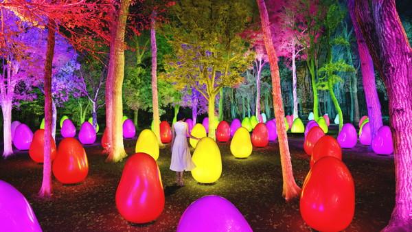 チームラボのアート空間が埼玉・東所沢公園に8月1日にオープン!自然とチームラボのコラボに魅了されて♡
