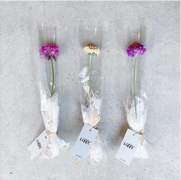 BOTANIC×ブルーボトルコーヒー 中目黒カフェ。お花がもらえるキャンペーンやPOP-UPなどが開催されます♡