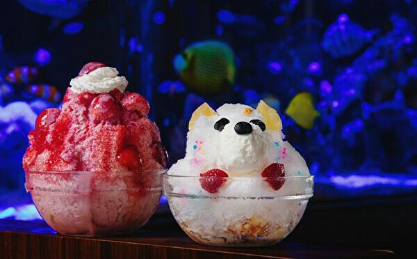 夏の思い出になりそうな1万匹の熱帯魚×映えかき氷♩幻想的なアクアリウムカフェが新宿にOPENしました!