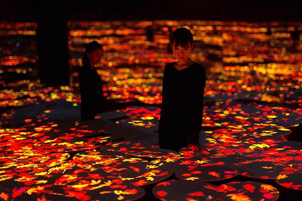 息をのむほど美しい幻想的な作品世界にトリップ♩お台場「チームラボボーダレス」に秋の景色が登場しました