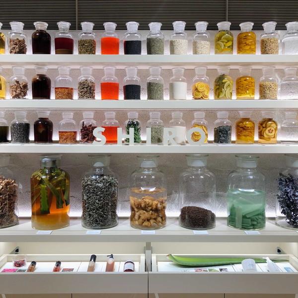 まるでミュージアム!?「SHIRO 表参道本店」が新感覚の店舗に。限定「SHIRO PERFUME」は早めにチェック!