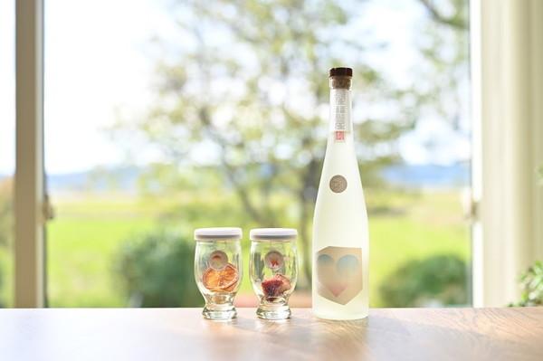 あま~い日本酒サングリアがおうちで簡単に作れる「ぽんしゅグリア」が気になる!成人式のお祝いにもぴったりです