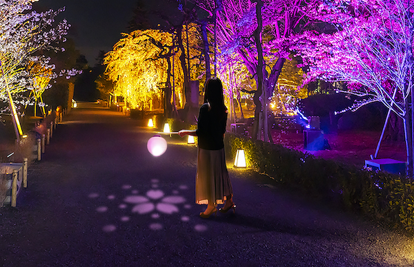アルコール除菌もアートに。元離宮二条城にて「NAKED FLOWERS 2021 −桜− 世界遺産・二条城」が開催