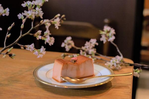 桜が満開の東京で味わいたい。渋谷のレトロな喫茶店、喫茶サテラに甘じょっぱい「桜プリン」がお目見え中です