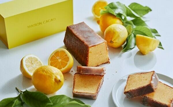 MAISON CACAOの初夏は国産レモンが主役。カカオビネガーを使ったケーキや爽やかマリトッツォは見逃せない