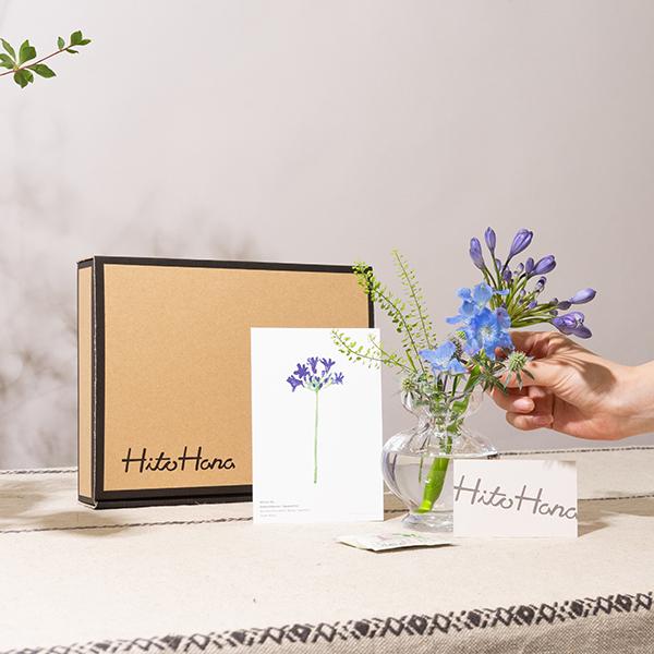 990円なら私の趣味、続くかも…?「HitoHana」のお花のサブスクでお部屋をコーディネートしよ