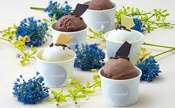 デンマーク発Summerbird ORGANICに夏メニューが登場。日本限定チョコアイスは食べ比べもお楽しみです