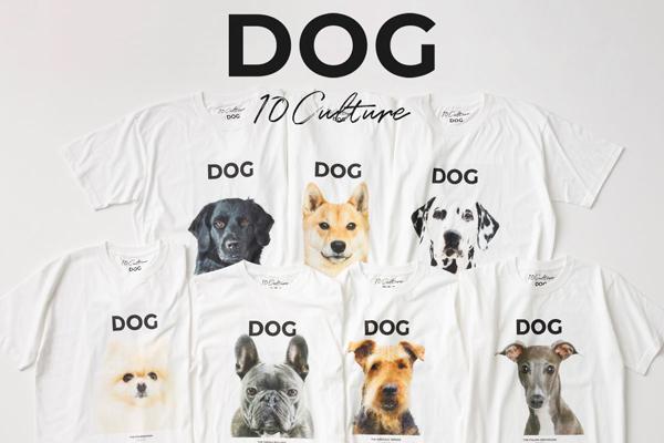かわいいお顔にノックアウト。犬好きなら絶対ゲットしたいスペシャルなTシャツがアダム エ ロペから登場です