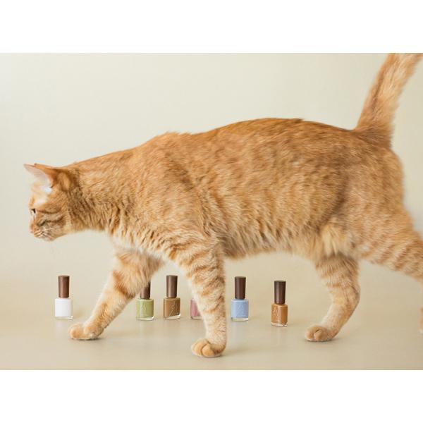 """かわいすぎて選びきれない事案発生!rihkaの""""猫コレクション""""限定ポリッシュは、全色買い待ったなしかも"""