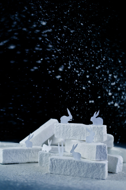 arctic_hare_powdered_sugar_dinabelenkoart