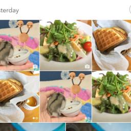 写真の再発見!クラウドに保存されてる写真を全部見られる超凄いアプリ「Sunday」