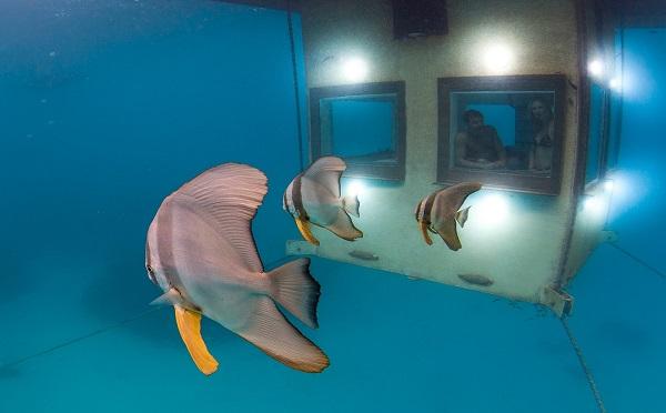 Underwater-room-10