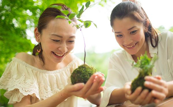 【奥入瀬】苔玉作り
